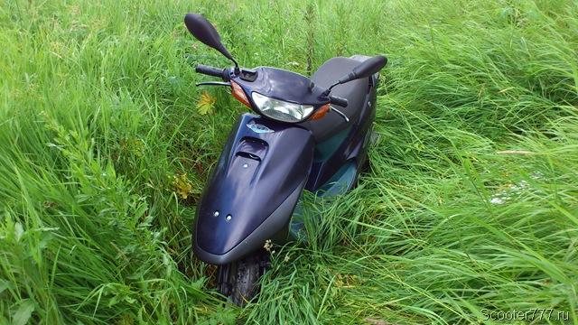 Скутер в зарослях