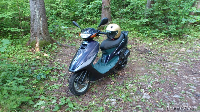 Скутер в лесу