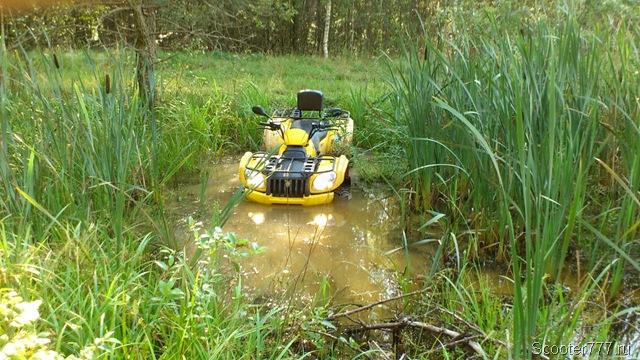 Квадроцикл в болотце