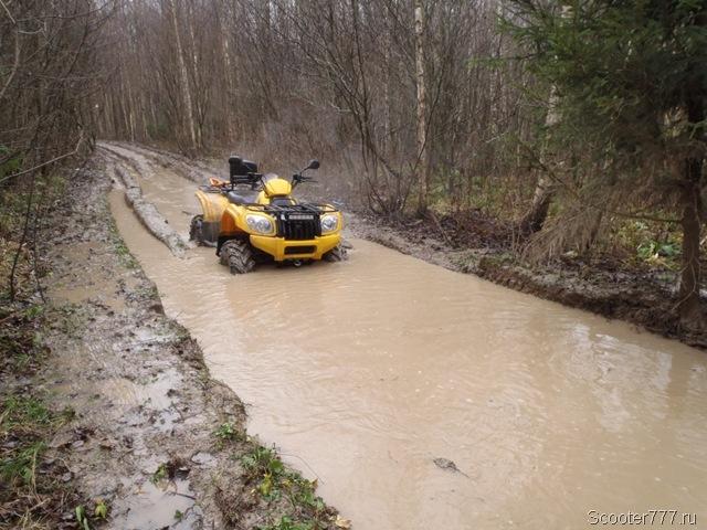 Лесные дороги затоплены