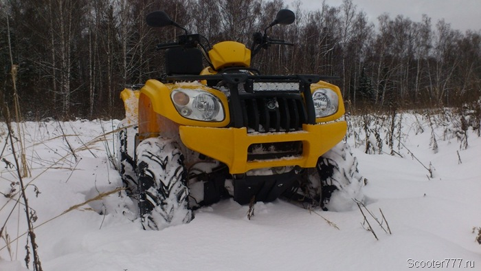 Квадрик зимой в поле