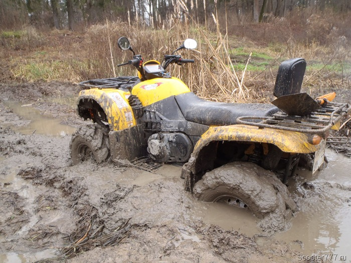 Засел в болоте