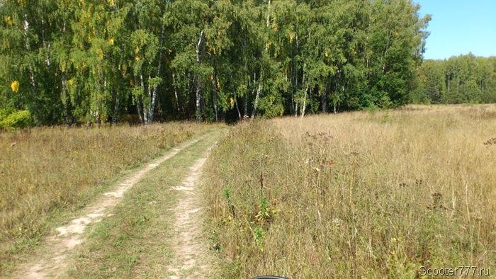 Дорога в поле