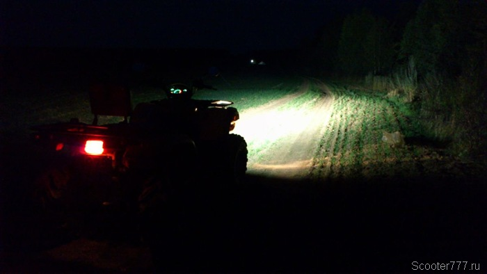 Темнота в поле