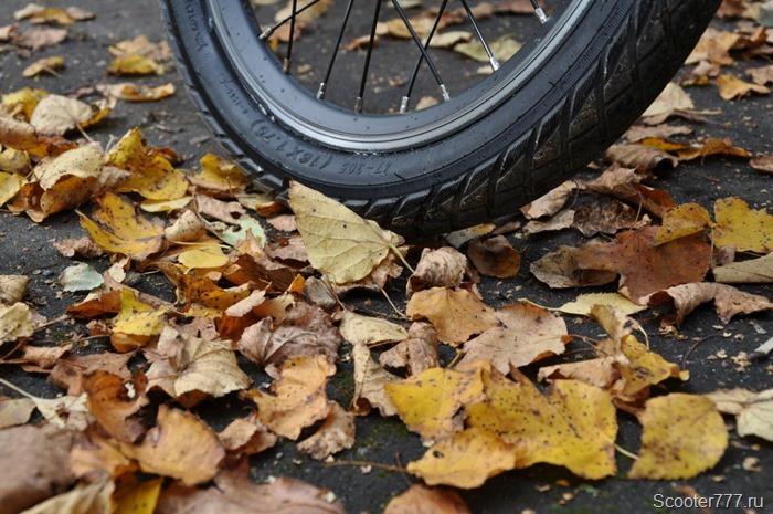 Колесо и осенние листья